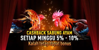 CASHBACK SABUNG AYAM ONLINE